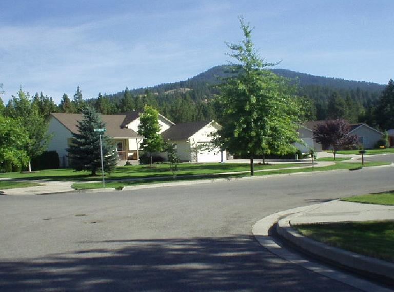 Deborah's neighborhood was really nice, with lots of trees both along the streets and in the foothills.  New home construction is threatening to clear-cut some of the trees in the foothills.