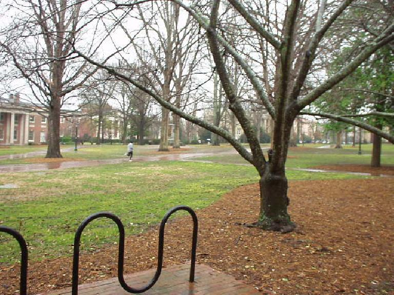 This was dedication: a runner runs through the University of North Carolina campus in driving rain and 40 degree temps.