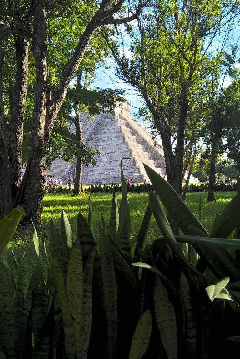 El Castillo, trees, green plants