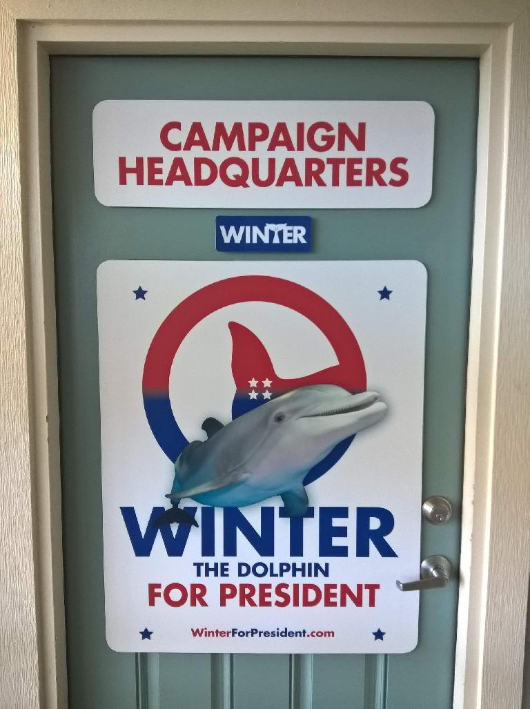 Winter for president.