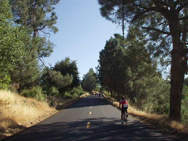 [Tollhouse Grade, Mile 41, 8:47am] The Tollhouse Grade was the longest continuous climb of the day, shooting up 2700' in 8 miles.  Still feeling good....