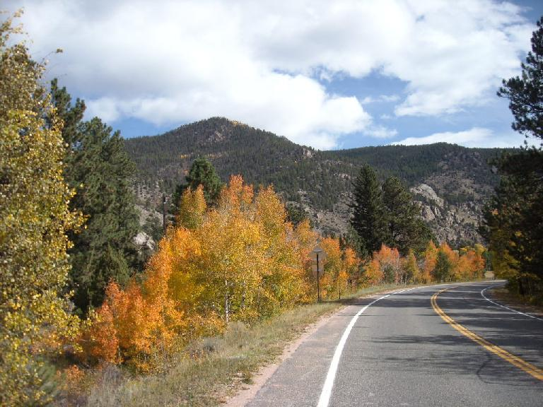 Lots of reds and oranges on Highway 14 through the Poudre Canyon.