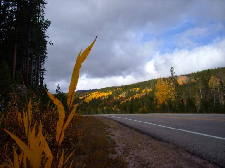 On the way to Steamboat Springs.