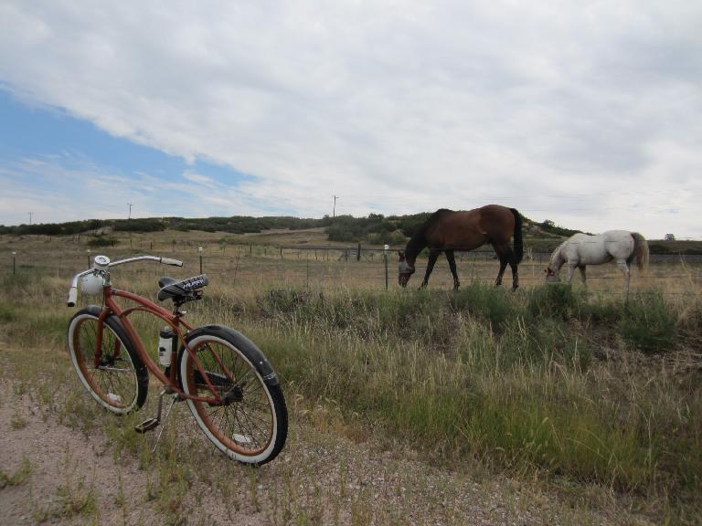 [Day 2, Mile 192, 10:16a] The Huffster visits some horses. (August 24, 2012)