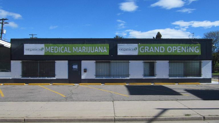 organic medical marijuana, grand opening, Colfax Ave.