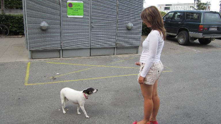 Katia encountering a dog.