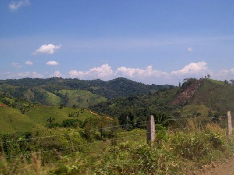 The lush Costa Rican countryside. Photo: Raquel Engel.