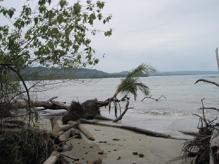 Beach at Parque Nacional Cahuita.(Photo: Tori) (March 21, 2011)