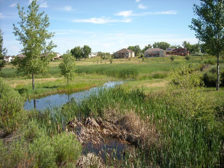 The ponds in the Hearthfire subdivision.
