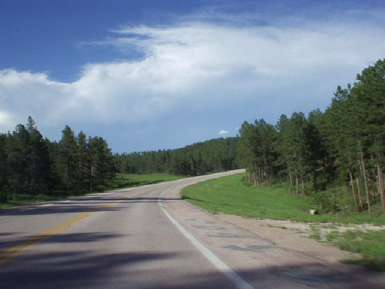 The Black Hills of SD was indeed a special, sacred area.  No wonder the U.S. and Native Americans kept fighting over it.