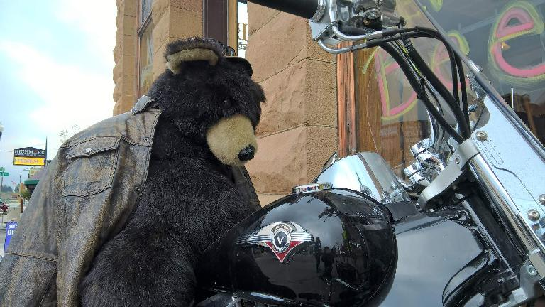 Stuffed bear riding black Victory motorcycle