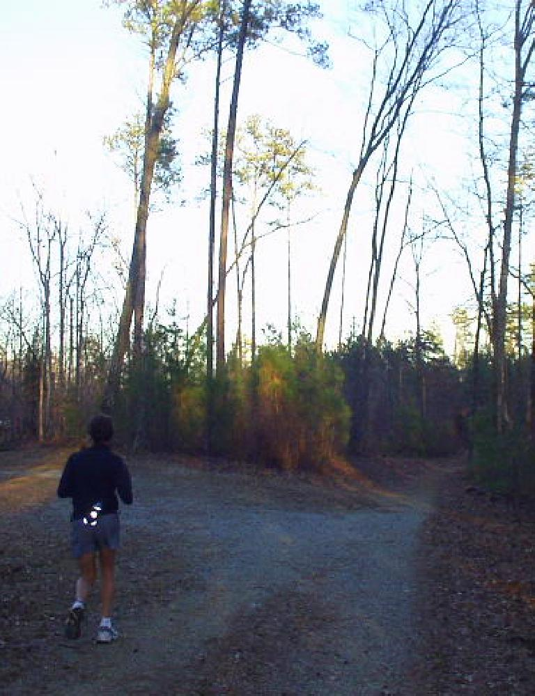 For good times' sake we also ran 10 miles in the Duke Forest. (February 11, 2007)