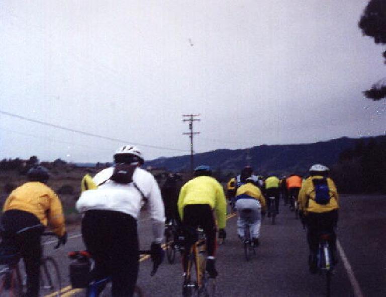 In a paceline in the 1999 Davis 200k Brevet.