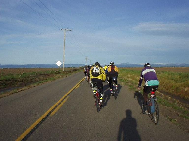 Mile 5, 7:22am: On flat land to the west of Davis, this would be the last time I ride in a paceline formation all day.