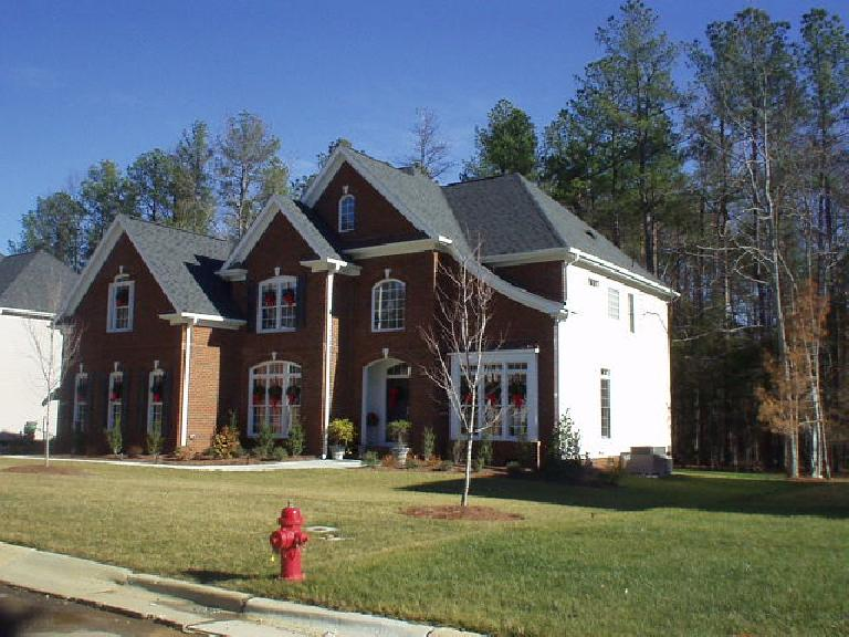 There were huge homes in Dan's neighborhood among the towering trees.