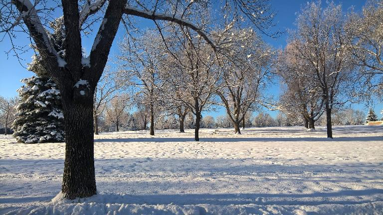 Edora Park, snow, January, Fort Collins