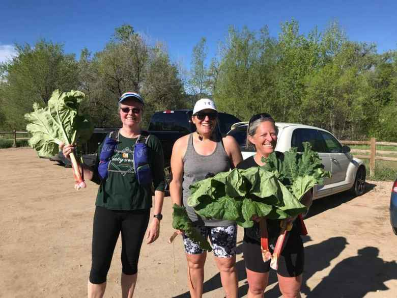A random lady gave Leslie, Nadine, and Alene rhubarb as they were running down Bingham Hill.