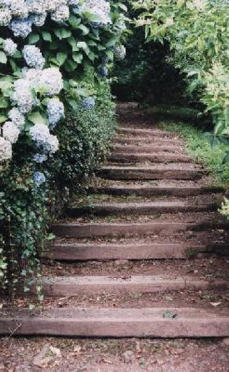 Steps to the Dunster Castle. (August 15, 2000)
