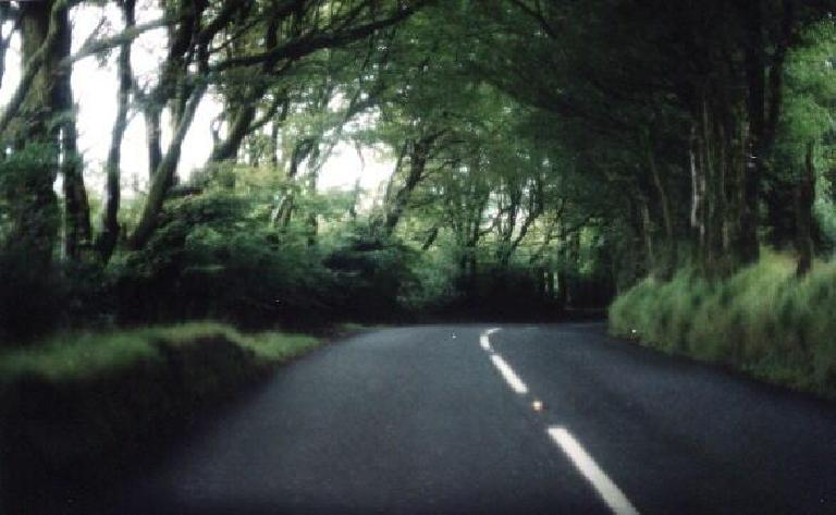 English country road. (August 15, 2000)