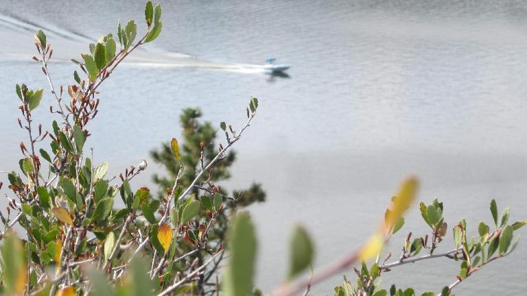 Speedboat in the Horsetooth Reservoir.