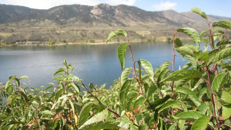 Lory State Park is on the other side of the Horsetooth Reservoir.