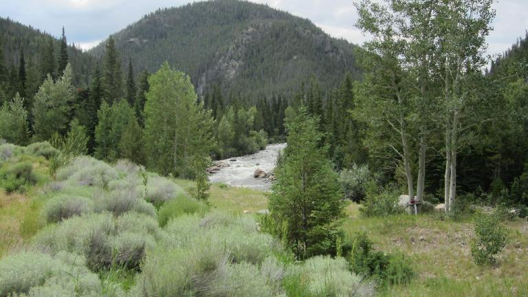 [Mile 60] The Poudre River just west of the Poudre Falls.