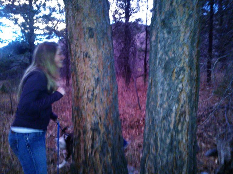 Noelle sniffing a tree. (November 21, 2012)