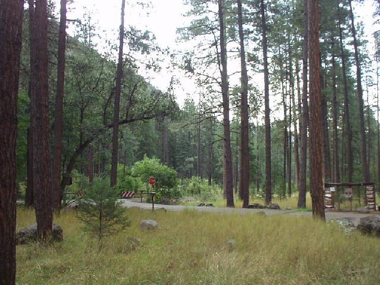 The Coconino National Forest made for an awesome drive down US 89A south of Flagstaff.