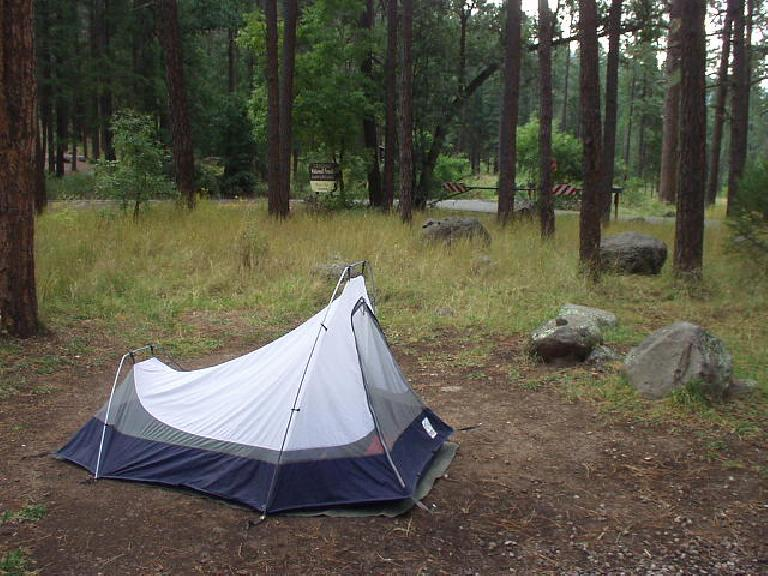 I camped in the Coconino National Forest.  It was pretty damp on this day.