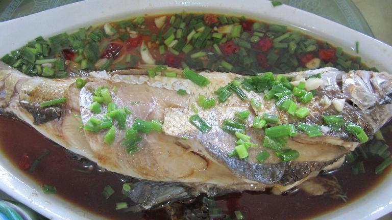 Fish. (May 22, 2014)