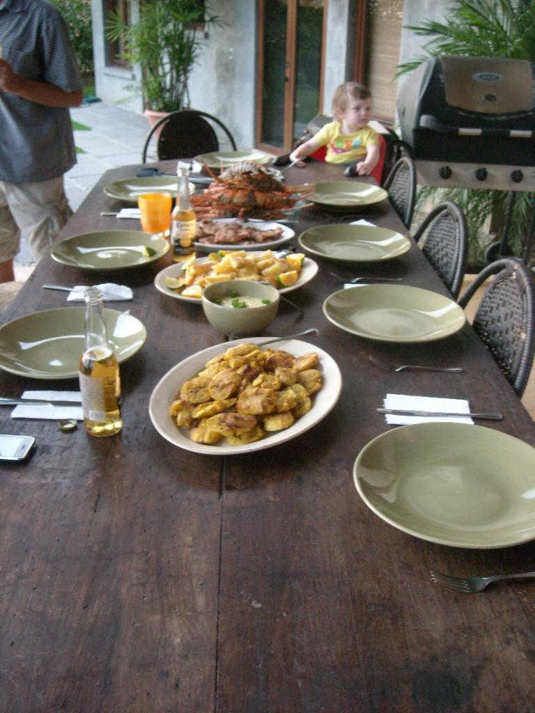 Our last catered meal at the villa also had fried plantains. (March 19, 2011)