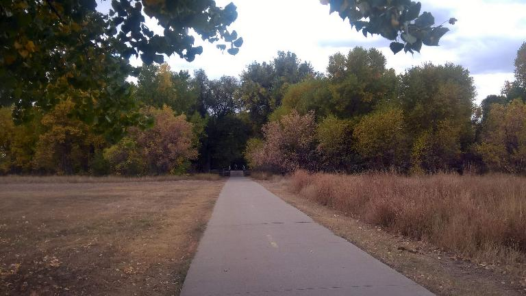 The Hickory Trail north of Lee Martinez Park.