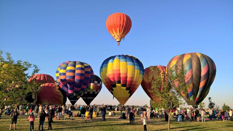 Hot air balloons taking off at 2016 Frederick in Flight.