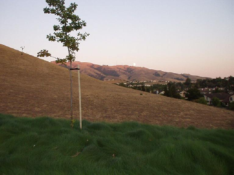 [Aug. 2002] The foothills from Paseo Padre, lit by a dimming sunset. (August 20, 2002)