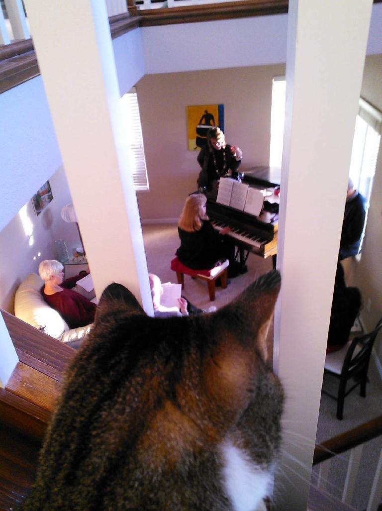 Tiger looks on as we humans sing below.