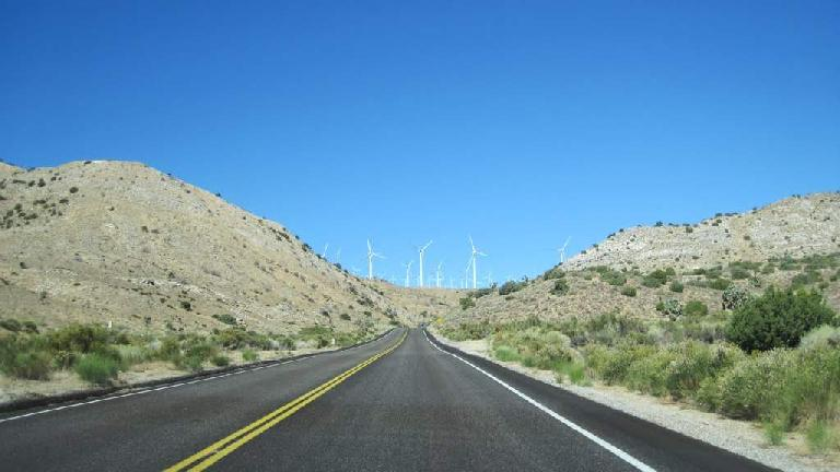 [Mile 59, 11:07 A.M.] Windmills near Mojave. Photo: Tori.