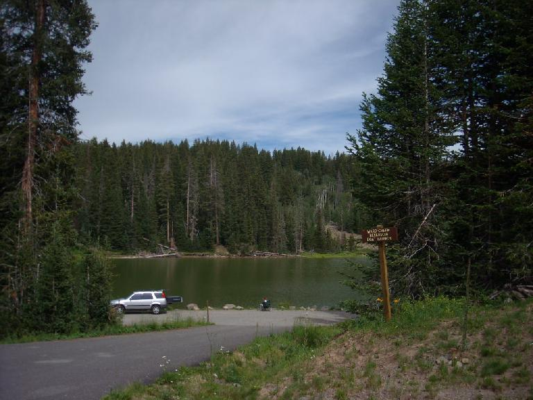 The drive to the race: Ward Creek, just about a mile from where I camped at Little Bear in the Grand Mesa National Forest. (July 23, 2010)