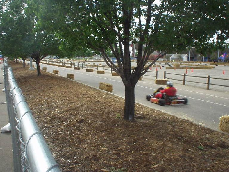 I had problems finding the park, but when there, no problem finding the go-karts due to their noise!  Here's a shifter-kart on a straightaway.