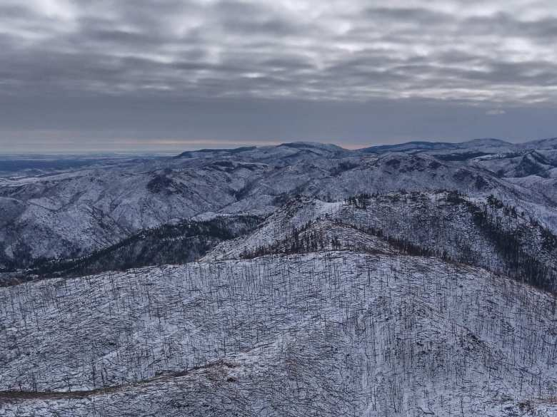 Recently burnt trees stuck out like matchsticks from the snow in the land east of Greyrock.