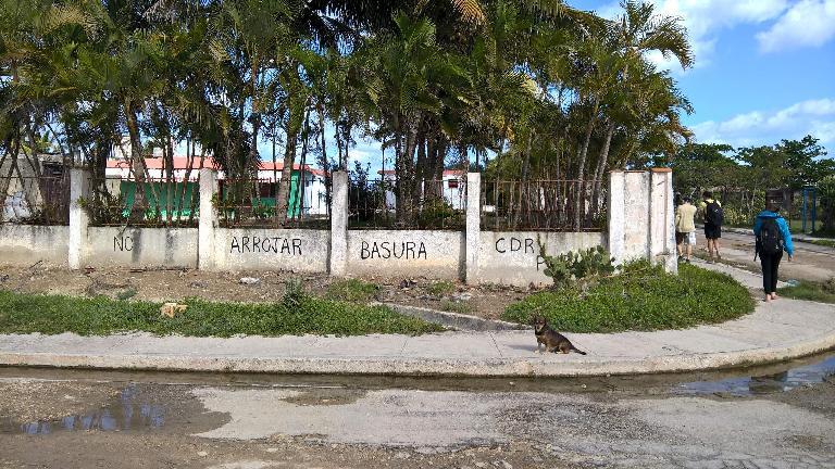 """""""No arrojar basura"""" (do not toss garbage) on a wall in Guanabo, Cuba."""