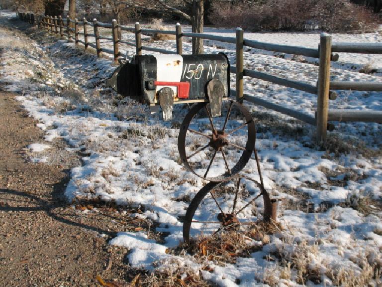 Ann's Hampshire pig mailbox.