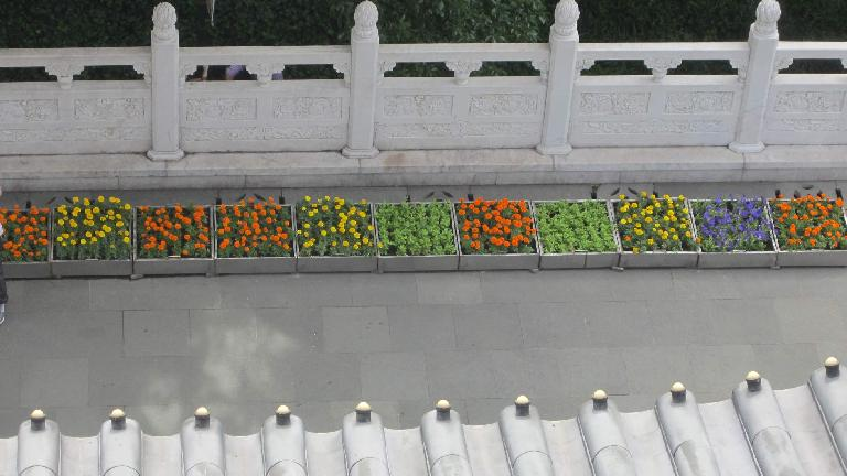 Flowers in planters as seen from Leifeng Tower.