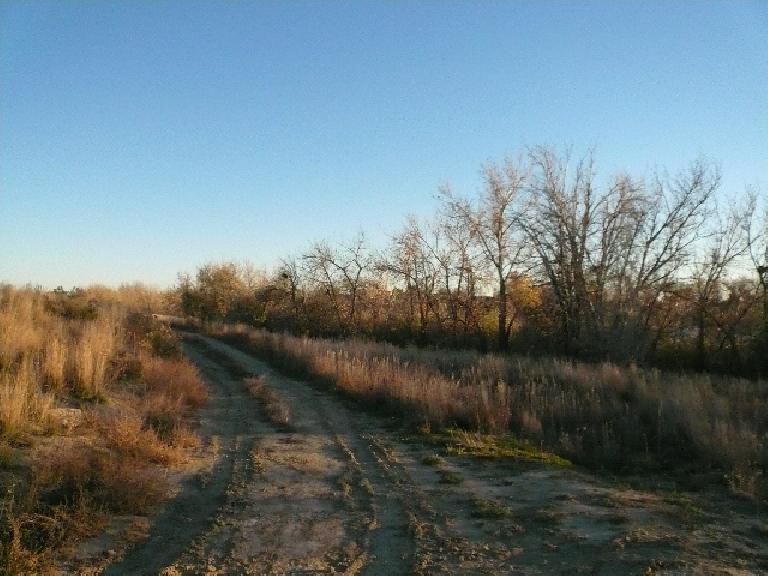 Trail by Richard's Lake.