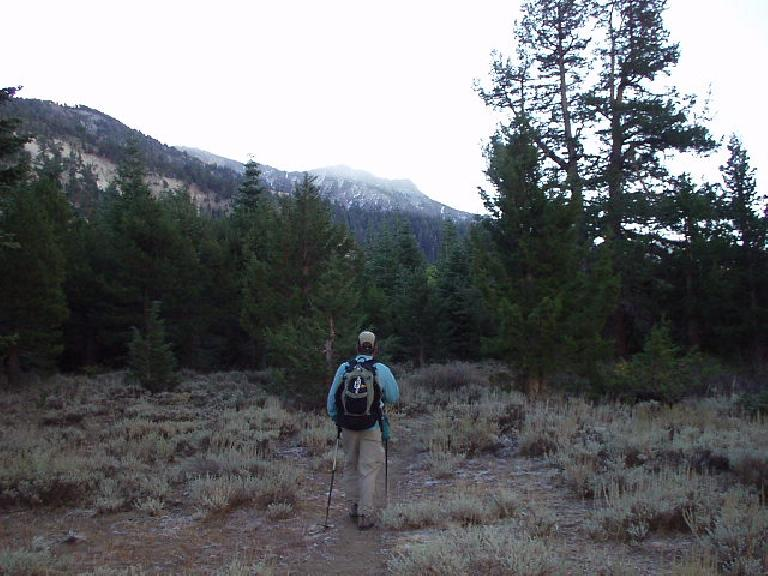 "8:40am: ""Where did the trail go?""  Following Adam towards the peaks for many miles off-trail."