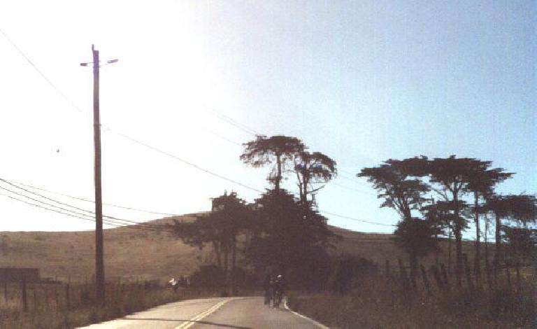 winding roads in the North Bay, 2001 Holstein Hundred