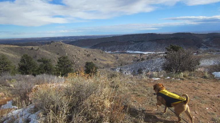 Sadiq peers over the Horsetooth Reservoir.