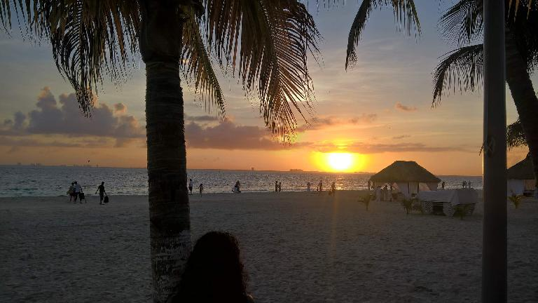 sunset, palm trees, Isla Mujeres
