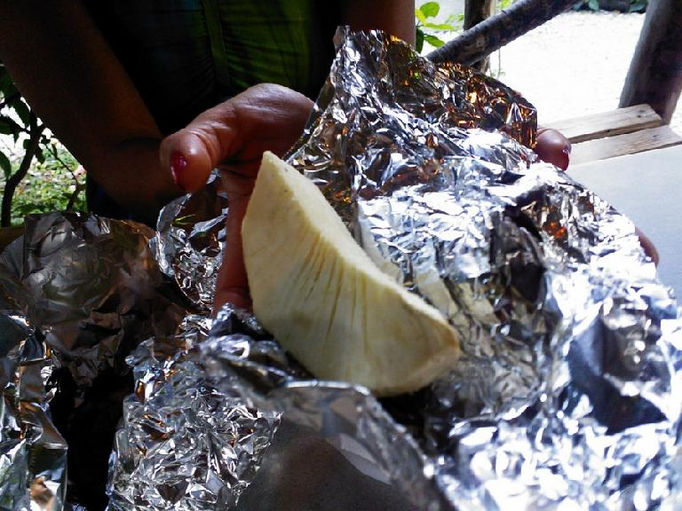 Breadfruit. (February 14, 2013)