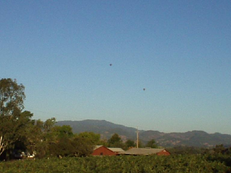 Mile 27, 7:42am: A wonderful sight: balloons over Napa Valley.