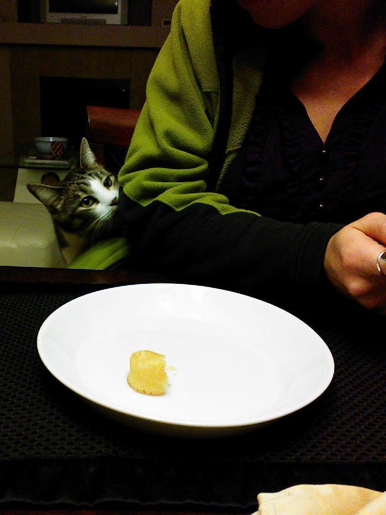 Tiger eyes the last Twinkie.